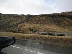 TSE2015_FaroeIslands_43
